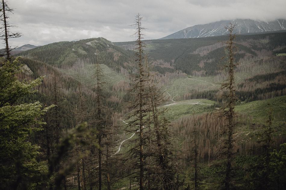 Sesja w Tatrach -050