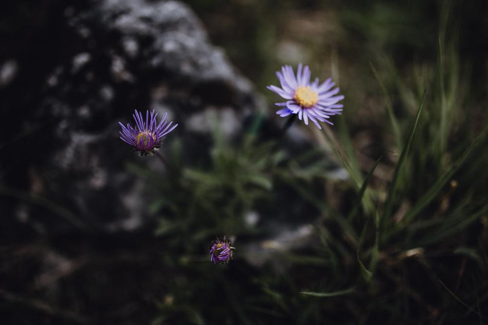 Sesja w Tatrach -099